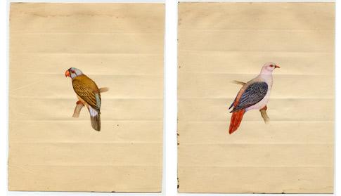 http://lenarevenko.com/blog/files/03-birds.jpg